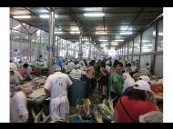 The biggest fish market in Lima