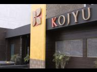 Kojyu: Asian flavors from a Peruvian perspective