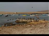 Photos of the Week: A Trip to Paracas