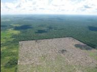 """Spanish firm given OK to drill in """"protected"""" area of Peru's rainforest"""