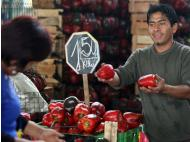 Inflation in metropolitan Lima in July reached 0.55 percent