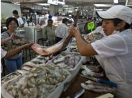 Peru´s seafood exports decline by nearly 50%