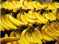 Peru to export organic bananas to Europe