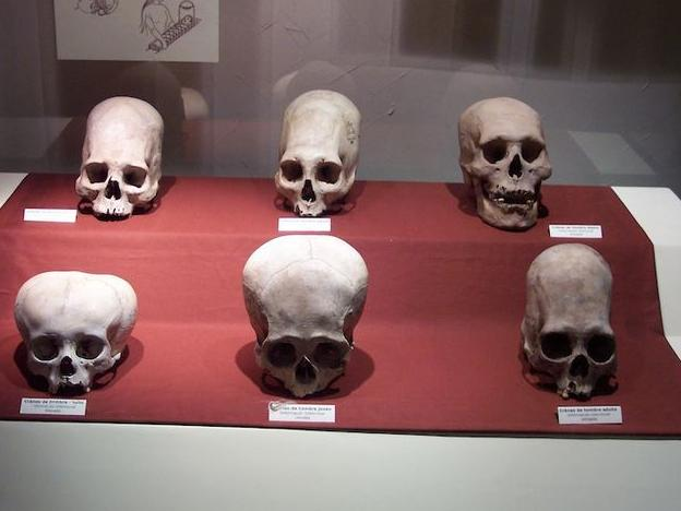 Calm down, the Paracas skulls are not from alien beings.