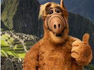 Selfie alert: Alf poses in front of Machu Picchu