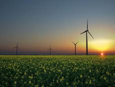Peru stepping up in renewable energy