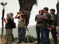 COP20 cultural agenda includes music, exhibits and bird watching