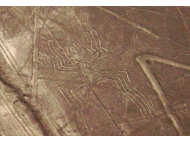 Nazca lines tell stories of different artists