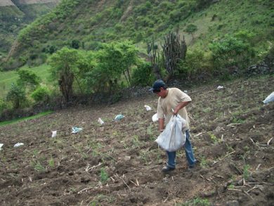 Survey of farming in Lima's food basket underway