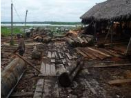 Iquitos: Authorities seize wood worth more than S/. 5 million