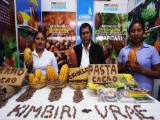 Minagri: Cocoa production to reach 90,000 tons this year