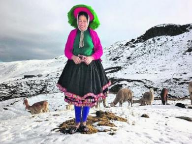 Six regions on alert for low temperatures