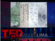 Manuel Lima: How knowledge grows