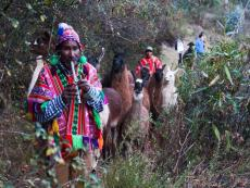 Cusco: Llamapack revives community and hiking in the region