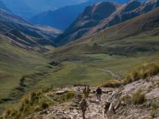 "NPR: ""For Inca road builders, extreme terrain was no obstacle"""