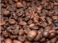 Dung coffee: The most expensive coffee in the world