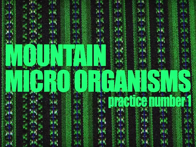 Agroecology in the Andes: Mountain microorganisms (VIDEO)