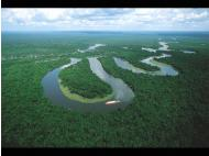 7 things that you didn't know about the wonderful Amazon River