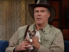 Will Ferrell introduces 'short-spine Peruvian mongoose' on late night show (VIDEO)
