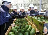 Peru set to be one of the largest fruit and vegetable producers in the world