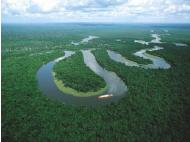 US university to establish research and conservation center for Peru Amazon