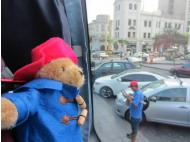 Paddington Bear's Diary: Day 1 & 2
