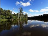 Peru, Norway and the UN pledge to protect the Amazon