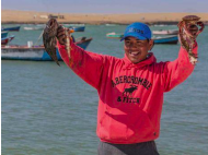 Peru's informal fishing industry