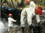 Petroperu denies having caused the Norperuano Pipeline oil spill in Loreto