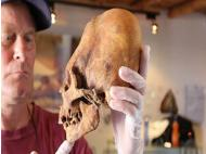 Paracas' elongated skulls changing known history