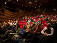 Lima Film Festival: Embracing 20 Years of Cinematography