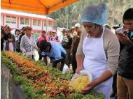 Largest eco-salad prepared in Huancayo