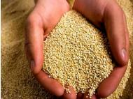 Peruvian quinoa exported to 64 countries