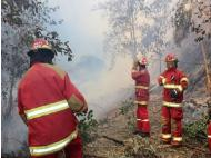 Northern Peru: Fires threatening natural areas
