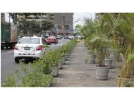 Miraflores: Av. Diagonal parking spots replaced by plants