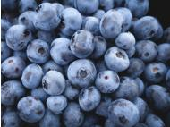 Peruvian blueberries rock Canada