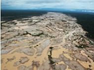 Stopping illegal mining