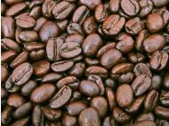 Help coffee areas affected by floods