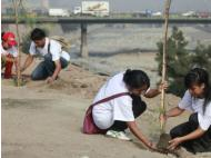 Lima to become greener