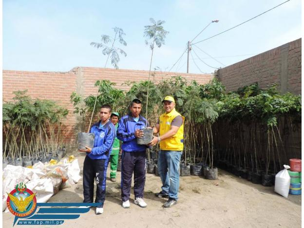 500 New Trees Planted in Lima