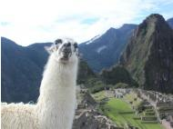Peru Is Vacation Capital of South America for British Vacationers